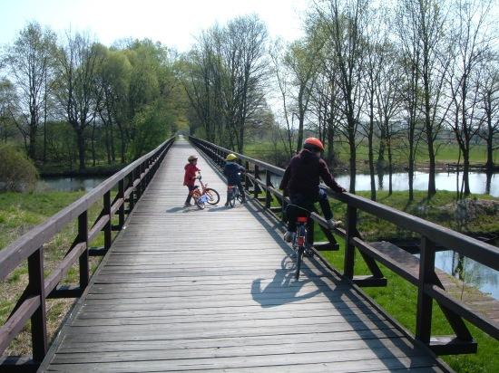 Die Spreewaldbahn- Eldorado für Fahrradfahrer