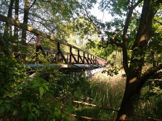 Im Dickicht versteckt Brücken der alten Spreewaldbahn