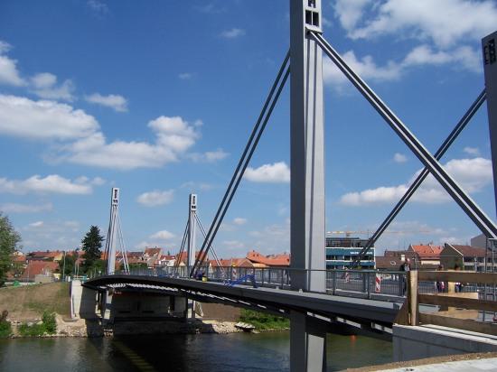 Zügelgurtbrücke Pylon