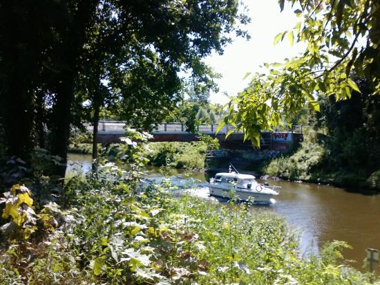 Knesebeckbrücke vom bewachsenen Berliner Ufer aus