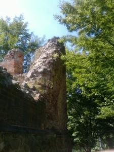 Ruinen der mehrschaligen Ringmauer um die Wasserburg