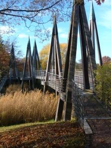 Rhizomatische Brücke BUGA
