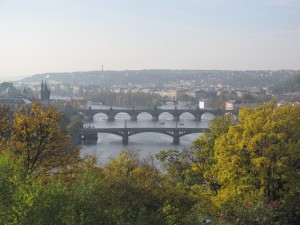 pontonMoldaubrücken