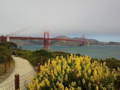 Die Golden Gate Bridge im hereiziehenden Küstennebel
